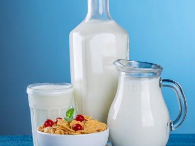 מחקר צרכית חלב בקרב ילדים | סקירה