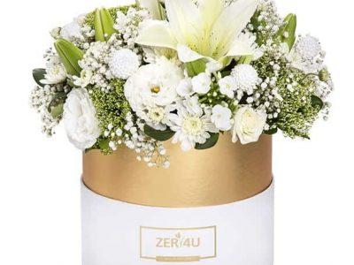 מתנות לחג ZER4U סקירה דוסיז צרכנות