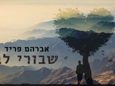 אברהם פריד מבצע: