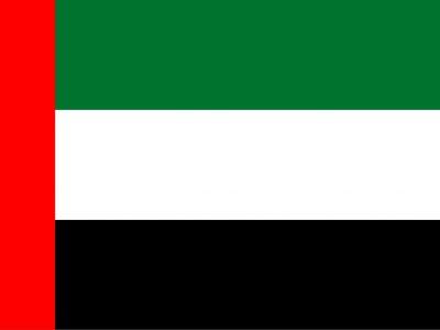 דגל דובאי| (ויקיפדיה)