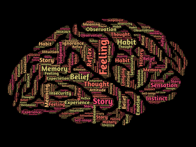 mind-נפש האדם CBT   תמונה להמחשה PIXABAY   סקירה